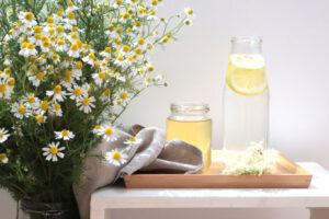Holundersirup selbstgemacht - mit Holunderblüte und Zitronenscheiben