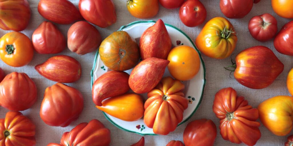 Viele bunte Tomaten auf einem Teller